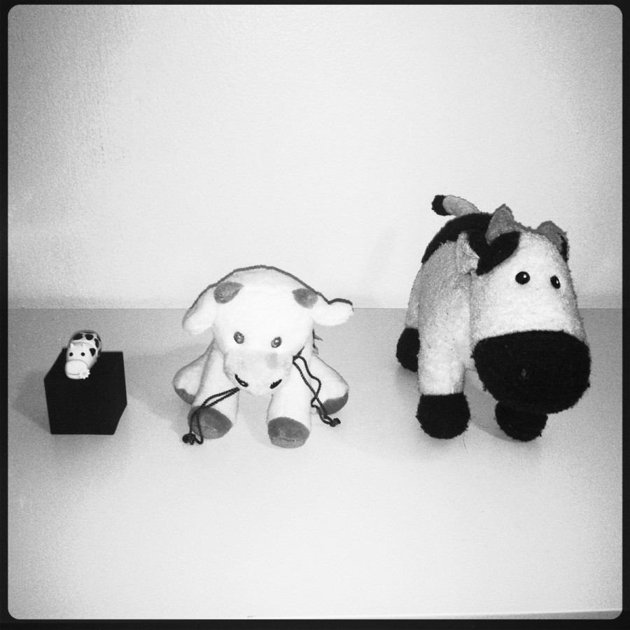 My cow pals! ^_^