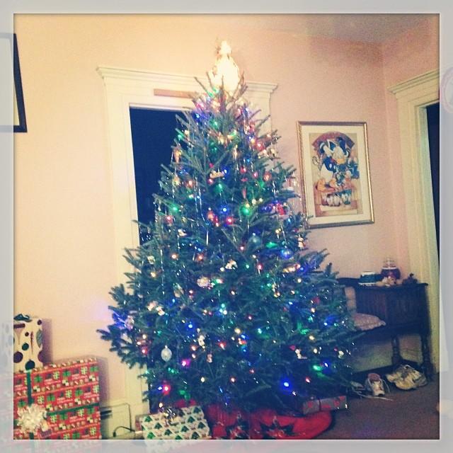 Happy Holidays from the Martz Family