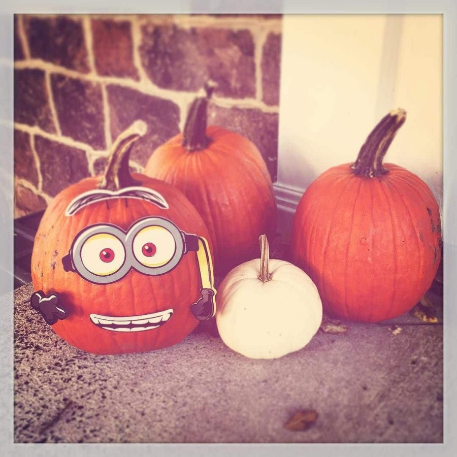 Despicable Pumpkin in PA