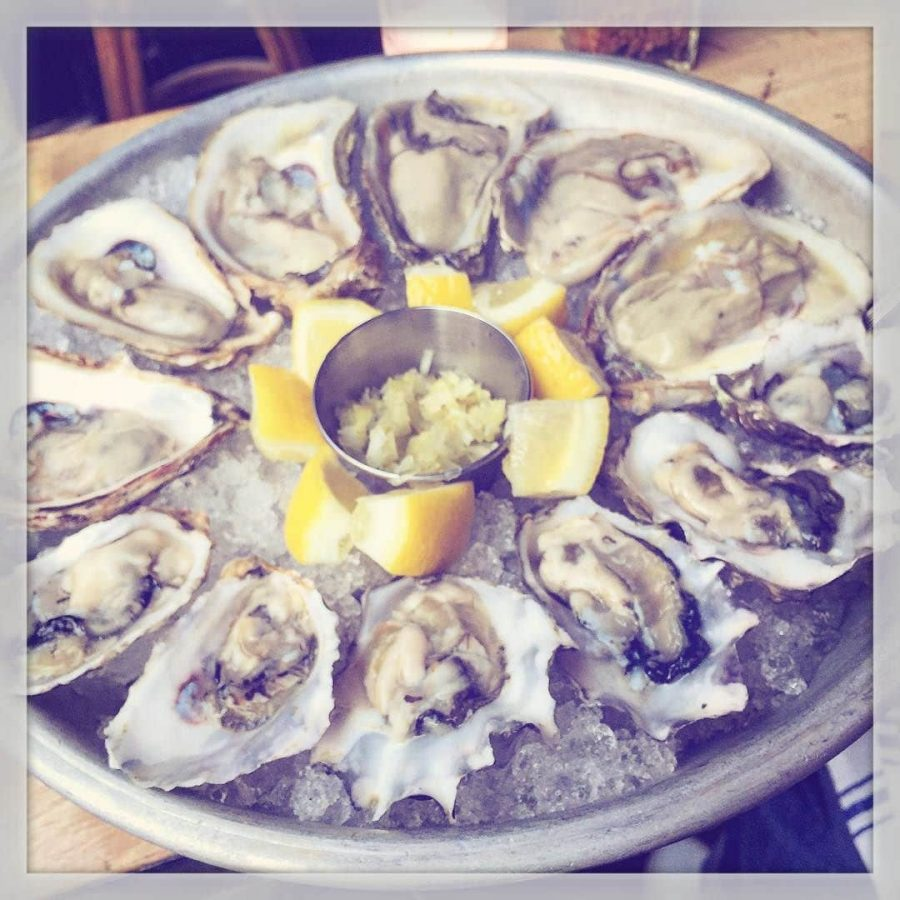 First Summer Oysters at Navy
