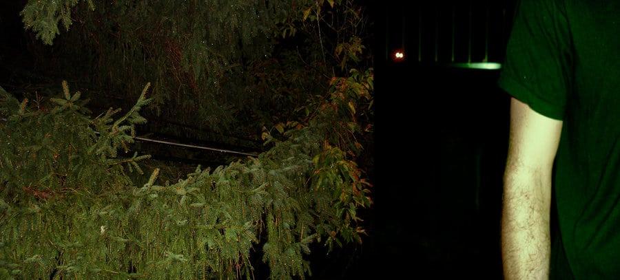 oz rain walk branches