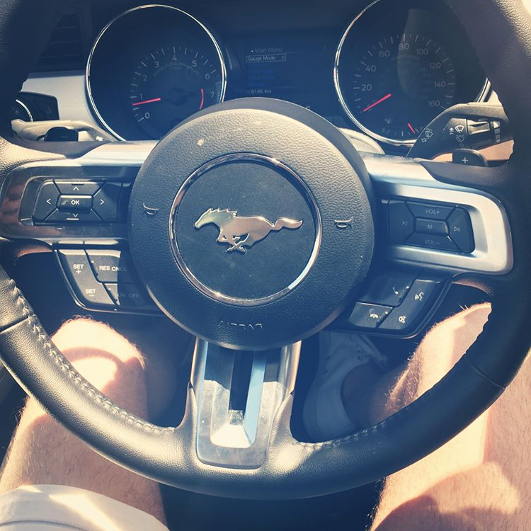 summer vacation to tampa florida mustang gt steering wheel
